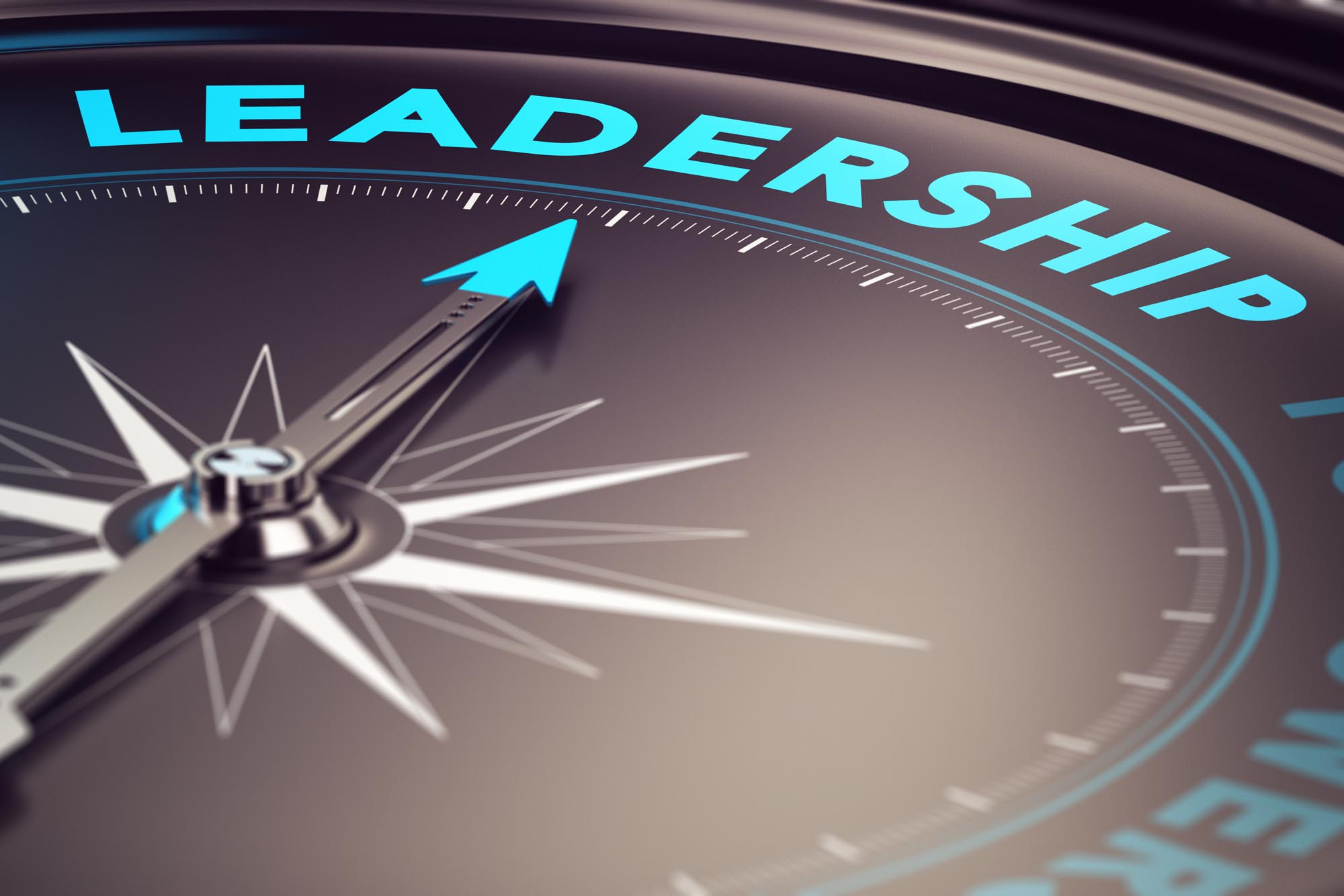 Leadership Goals