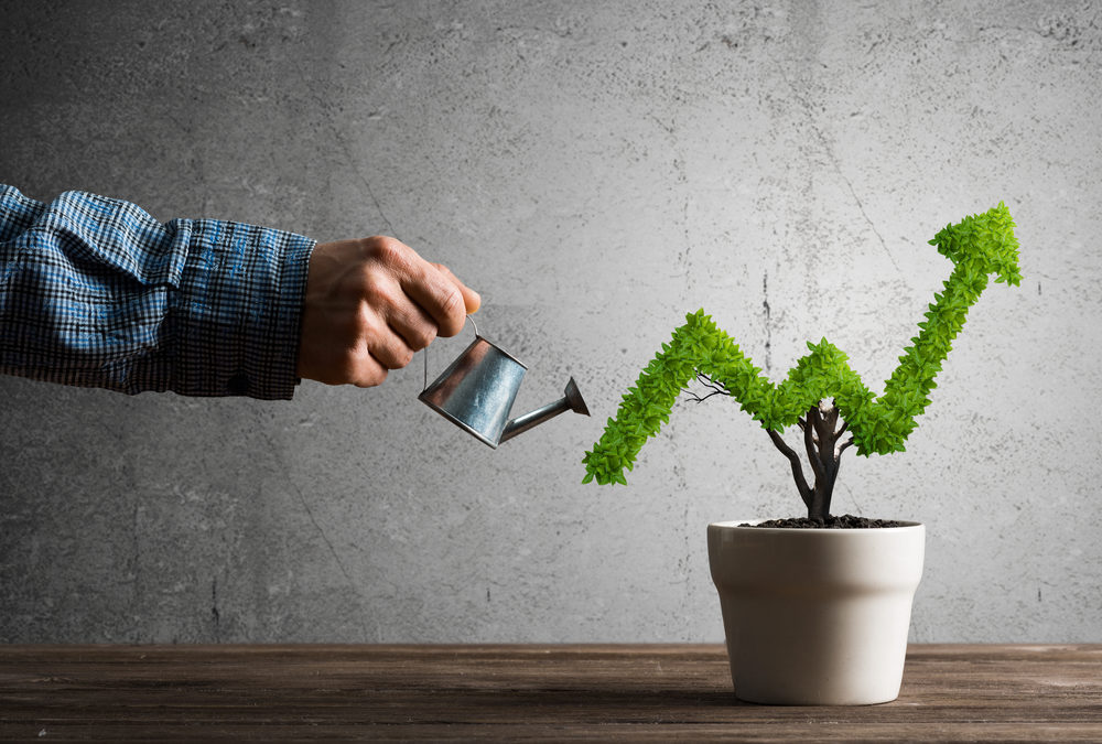 5 Factors Affecting Business Growth
