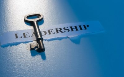 Traits of Proactive Leaders